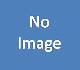 デュミナスの画像
