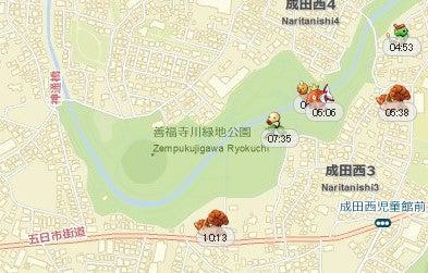 「善福寺川緑地公園」は「ロコンの巣」か?の画像