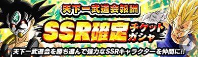 天下一武道会報酬 SSR確定チケットガチャ