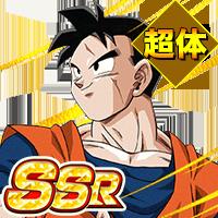 SSR<未来を背負う戦士>孫悟飯(未来)(超体)