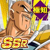 SSR<絶望的な破壊力>ナッパ(極知)