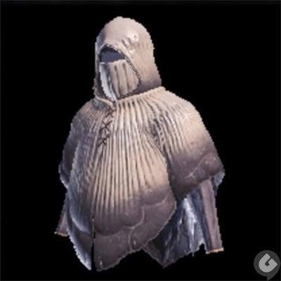 免疫の装衣