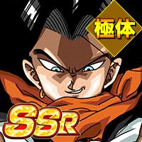 SSR【地獄と化す未来】人造人間17号(未来)(極体)