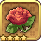 愛と幻影のバラ