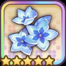 白氷の花びら